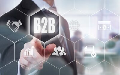 B2B-Online-Shops bieten hervorragende Erfolgschancen